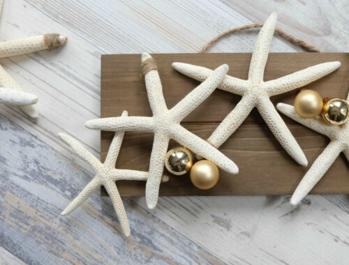 DIY Coastal Christmas Craft Idea by Champagne and Sugarplums