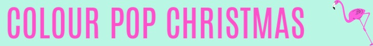 Colour pop Christmas on a mint background with a flamingo icon by Champagne and Sugarplums