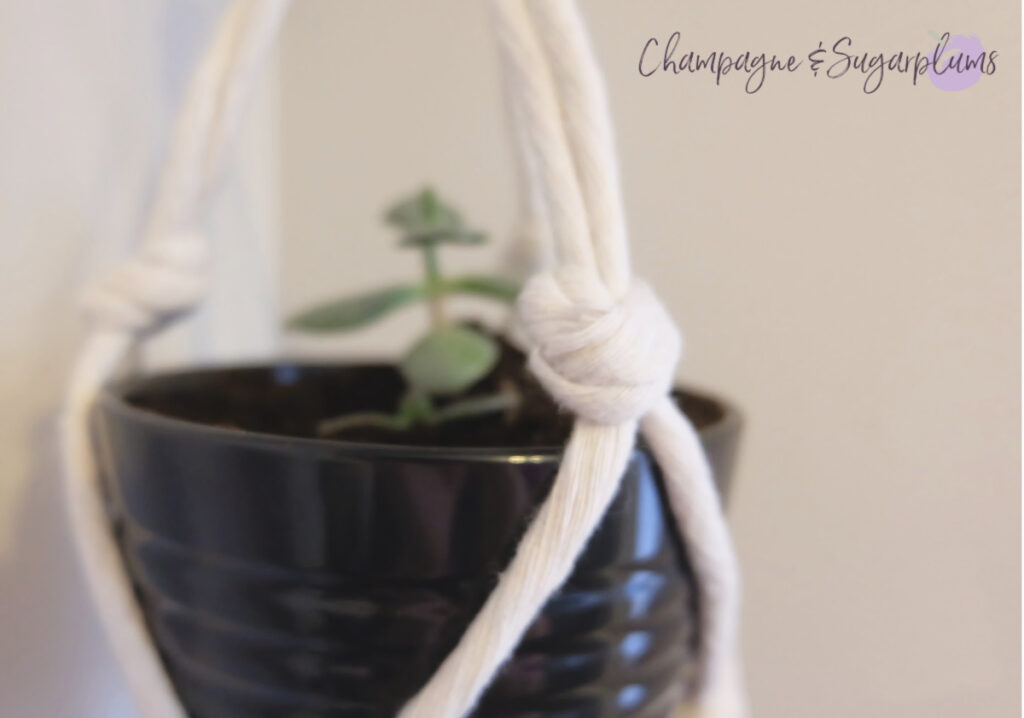 Easy DIY Indoor Macrame Plant Hanger Tutorial