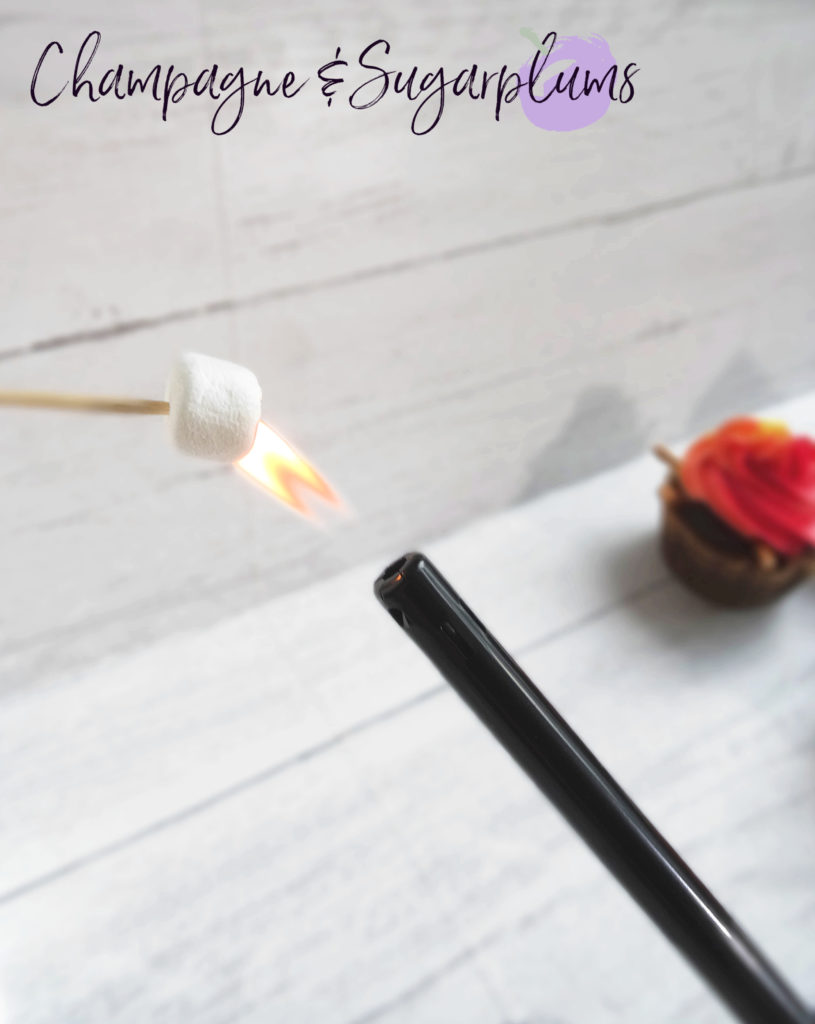 Toasting a marshmallow with a BBQ lighter by Champagne and Sugarplums