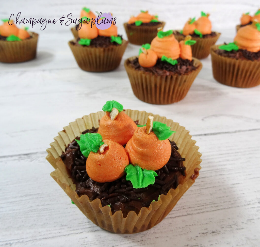 Pumpkin Patch Cupcakes on a white background by Champagne and Sugarplums