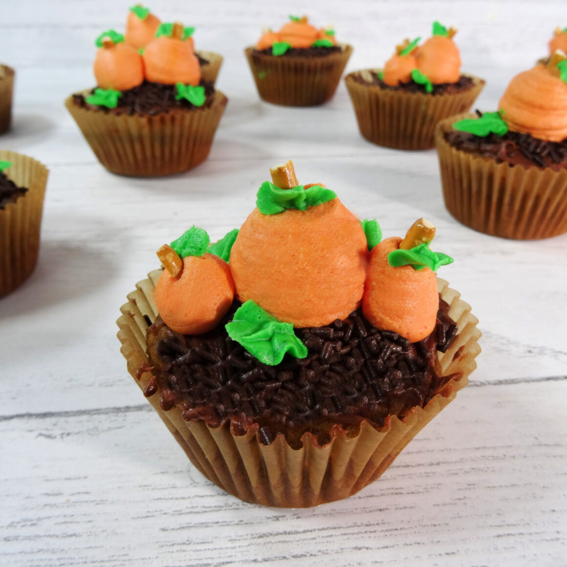 How to Decorate Pumpkin Patch Cupcakes by Champagne and Sugarplums