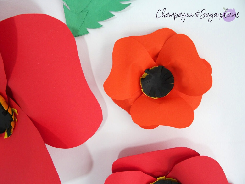 Paper Poppy Wall Art on a white background by Champagne and Sugarplums