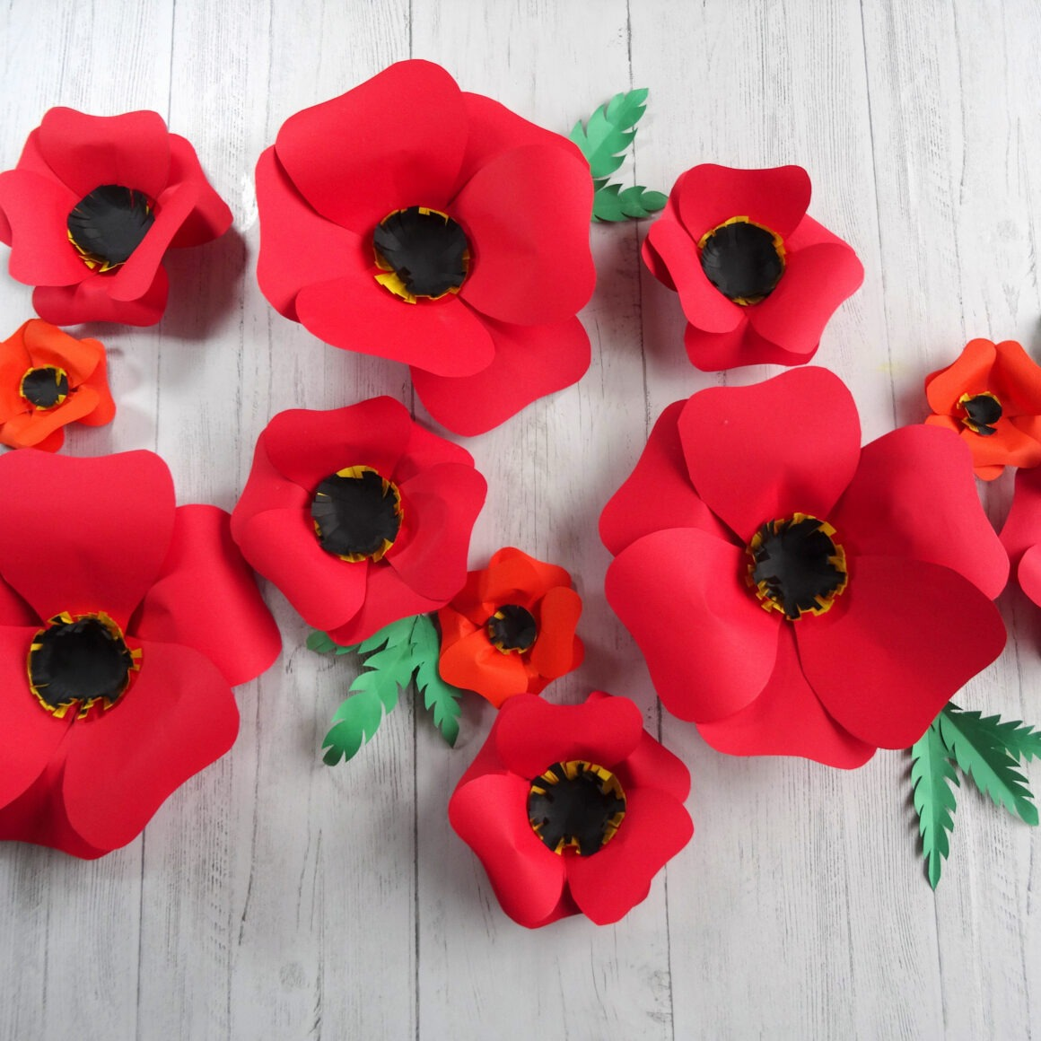 Red paper flowers on a white background by Champagne and Sugarplums