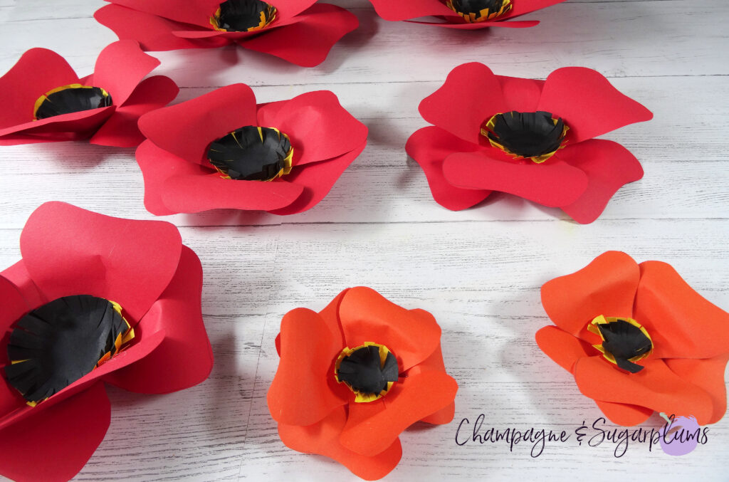 Assembled red and orange paper flowers of various sizes on a white background by Champagne and Sugarplums