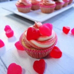 A Cherry Cheesecake Cupcake on a white background surrounded by red and pink candy hearts by Champagne and Sugarplums